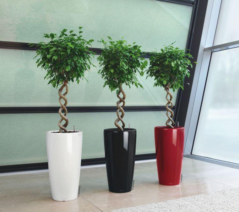 rondo lechuza cvetli ni lonec za rastline vrtni center. Black Bedroom Furniture Sets. Home Design Ideas